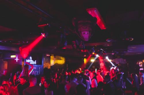 discoteca hollywood milano orari